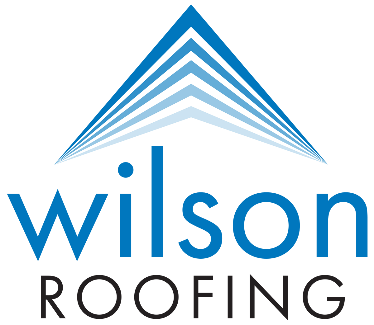 Wilson Roofing Icon